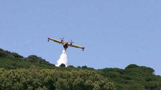 El incendio forestal en Tarifa arrasa 480 hectáreas