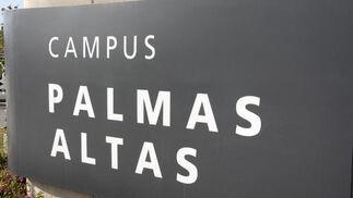 Campus Palmas Altas de Abengoa.  Foto: Belén Vargas