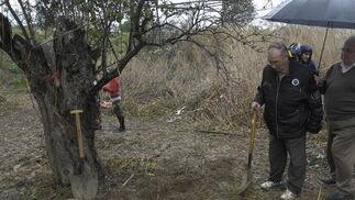 José Antonio Casanueva observa la tierra tras removerla con una pala.  Foto: Manuel Gómez