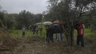 Vecinos y medios siguieron al abuelo de Marta con paraguas y chubasqueros para continuar con la búsqueda de la joven.  Foto: Manuel Gómez