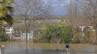 Aspecto que presentaba la carretera que une Santiponce con La Algaba tras el desbordamiento del pantano de el Gergal.  Foto: Juan Carlos Vázquez
