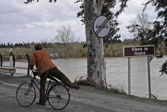 Vista de la ribera de Huelva a su paso por el municipio algabeño.  Foto: Juan Carlos Vázquez