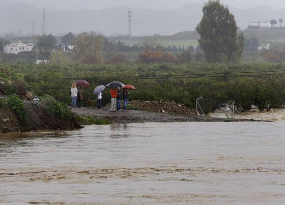 El río Guadalhorce a su paso por Cártama.  Foto: Migue Fernández, Sergio Camacho, Agencias