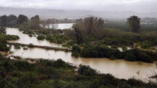 Zona de cultivos inundada en el valle del Guadalhorce.  Foto: Migue Fernández, Sergio Camacho, Agencias