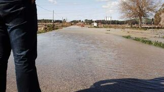Carretera inundada en Arcos de la Frontera  Foto: Paco Periñan / Aguilar / Borja Benjumeda / Pascual/ JC Toro / Efe