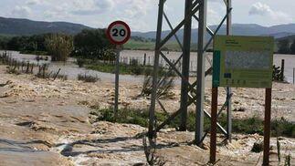 Carretera cercana al Parque Natural de los Alcornocales