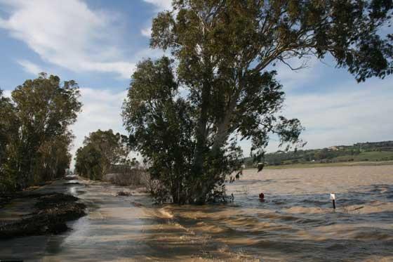 Río Álamo entre Benalup y Alcalá de los Gazules  Foto: Paco Periñan / Aguilar / Borja Benjumeda / Pascual/ JC Toro / Efe
