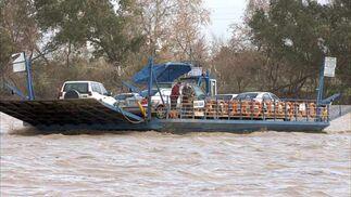 Una embarcación navega por el Guadalquivir en el término de Coria del Río  Foto: Manuel Gómez