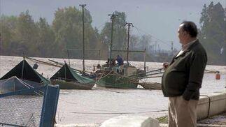 Imagen del río en Puerto Gelves  Foto: Manuel Gómez