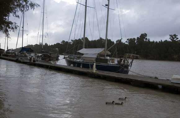 El desembalse de los pantanos está provocando crecidas importantes en el Guadalquivir  Foto: Manuel Gómez