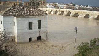 Las imágenes de las inundaciones en la provincia según los lectores del eldiadecórdoba.es. / Alejandro Moyano