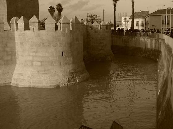 Las imágenes de las inundaciones en la provincia según los lectores del eldiadecórdoba.es. / Francisco José Cobos