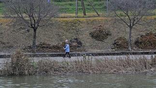 El río alcanza un elevado nivel de agua.  Foto: Juan Carlos Vázquez