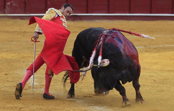 El torero Enrique Ponce en una de sus faenas.  Foto: Sergio Camacho