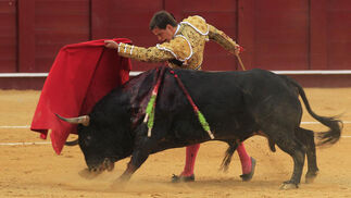 Faena del Juli en la plaza de toros de La Malagueta.  Foto: Sergio Camacho