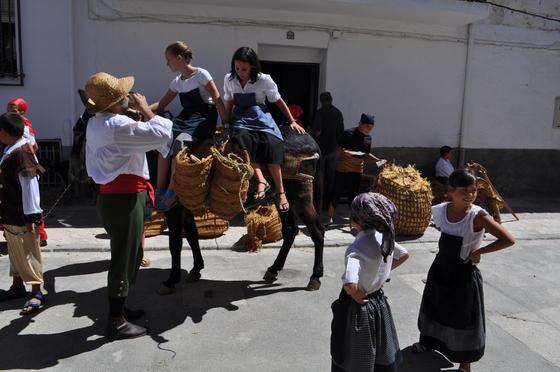 Más de 500 vecinos recrearon las vestimentas de la época con burros, ovejas,...   Foto: Ramón Ubric