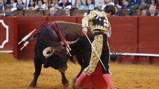 El Juli lidia al sexto toro.  Foto: Juan Carlos Muñoz