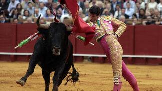 Luis Vilches torea al primer toro.  Foto: Juan Carlos Muñoz