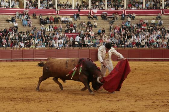 lfonso Oliva Soto, en el toro que cerró la tarde.  Foto: Juan Carlos Muñoz