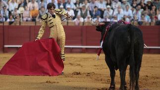 Antonio Barrera mira desafiante durante su faena.  Foto: Juan Carlos Muñoz