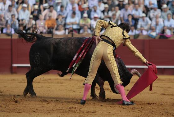 Antonio Barrera, en la faena de muleta.  Foto: Juan Carlos Muñoz
