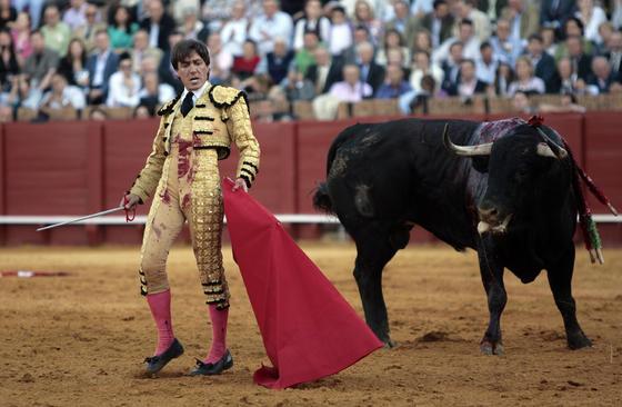 El segundo toro de Antonio Barrera resultó de nula clase y mucho peligro.  Foto: Juan Carlos Muñoz