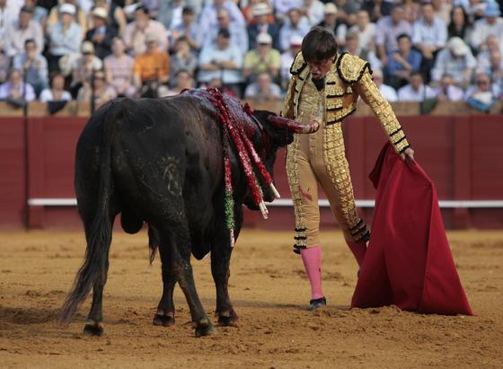 Barrera mira desafiante al toro.  Foto: Juan Carlos Muñoz
