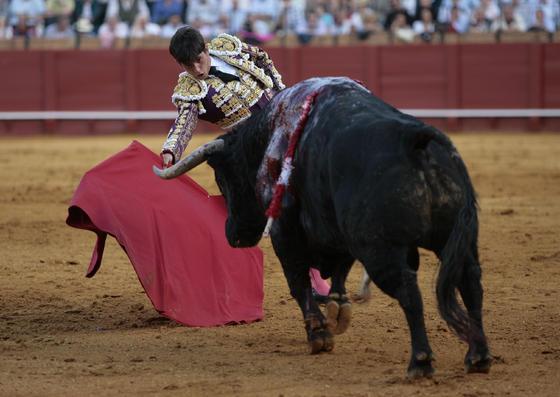 Derechazo de Alberto Aguilar.  Foto: Juan Carlos Muñoz
