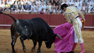 Salvador Cortés al comienzo con su segundo toro.  Foto: Juan Carlos Muñoz