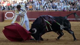 Salvador Cortés ante el descastadísimo quinto toro de la tarde.  Foto: Juan Carlos Muñoz