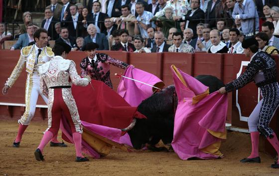 La cuadrilla con el quinto toro, herido.  Foto: Juan Carlos Muñoz