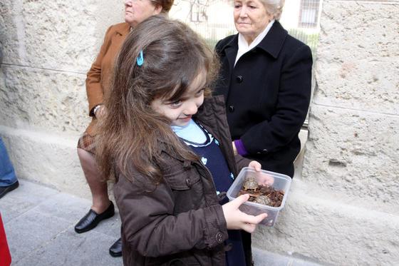 Las imágenes de los actos festivos en honor de San Antón