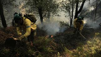 Miembros del Infoca con las llamas a sus espaldas  Foto: Javier Flores