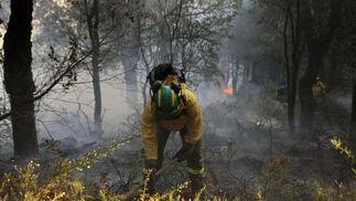 Un miembro del Infoca con las llamas a sus espaldas  Foto: Javier Flores