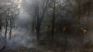 Un retén numeroso trabaja entre humo y llamas  Foto: Javier Flores