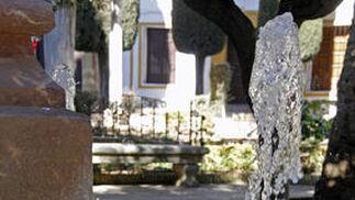 Helada en Málaga Capital y provincia  Foto: Javier Albiñana