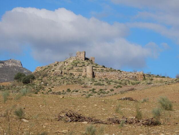 Castillo de Zalia (Alcaucín)