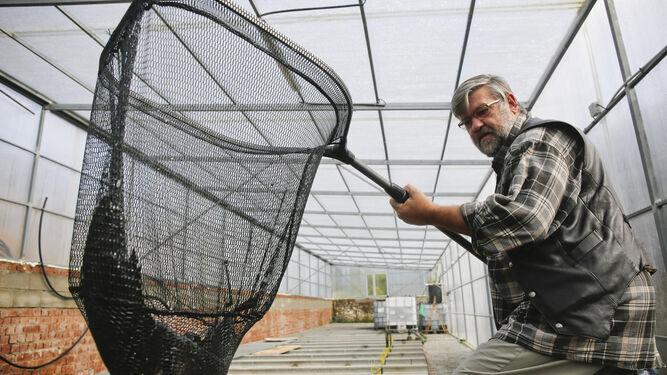 2. Cultivo de tilapias combinado con el de hortalizas. 3. Ulrich Eich muestra un ejemplar de pez bagre africano que cría mediante cultivo acuapónico