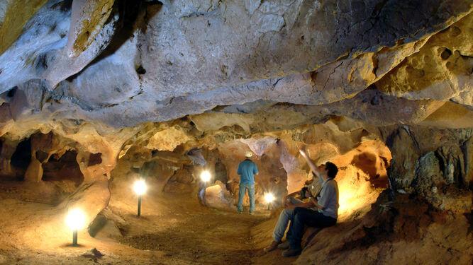 Investigadores estudian la llamada galería de las Conchas de la cueva de la Victoria.