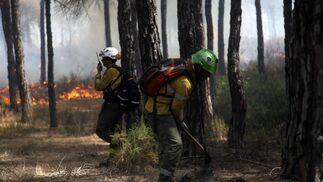Las imágenes del fuego de Las Cumbres