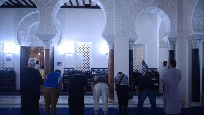 La condena, el dolor y el miedo también son musulmanesUnidos contra el terror