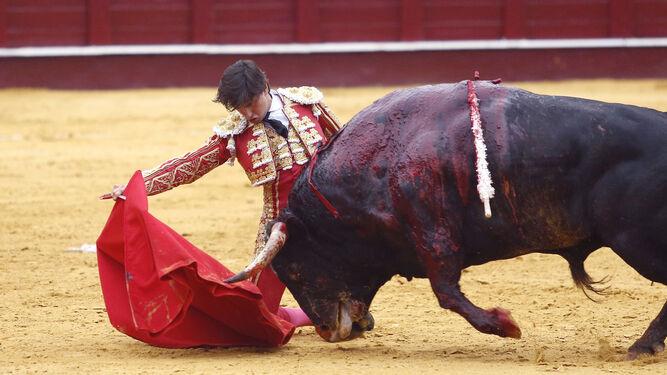 Roca Rey cerró la faena al tercer toros con las rodillas en tierra