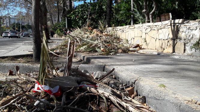 Los restos de la palmera apilados en el lateral de la acera del Paseo de los Curas