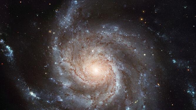 La Galaxia Messier 101 o Galaxia del Molinillo.