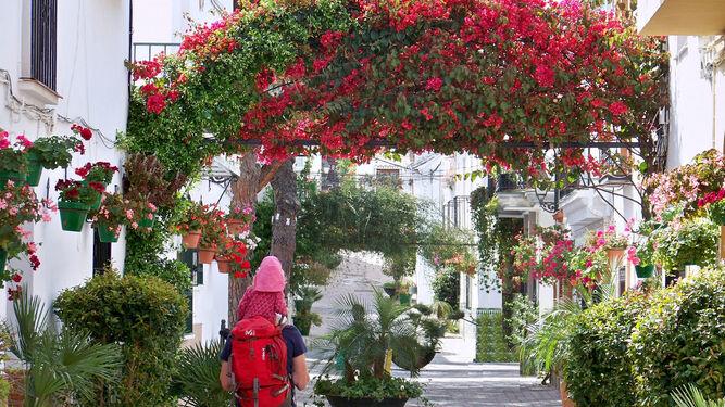 Las calles han sido ornamentadas con la colocación de flores y la plantación de árboles.