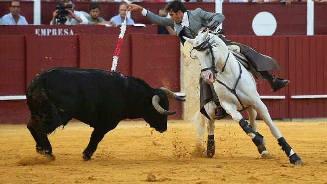 Toros en Málaga   El último tercio Pasión por los 'caballos