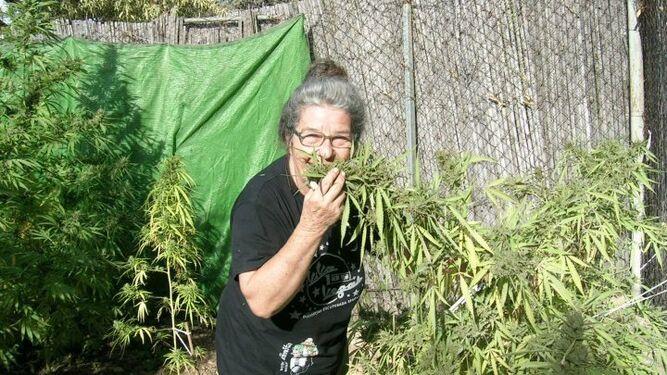 la-abuela-marihuana-condenada-a-nueve-meses-de-prisión-por-cultivar-cannabis-y-distribuir-marihuana-con-fines-terapéuticos