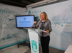 Marbella destinará los 34 millones del superávit a combatir el coronavirus