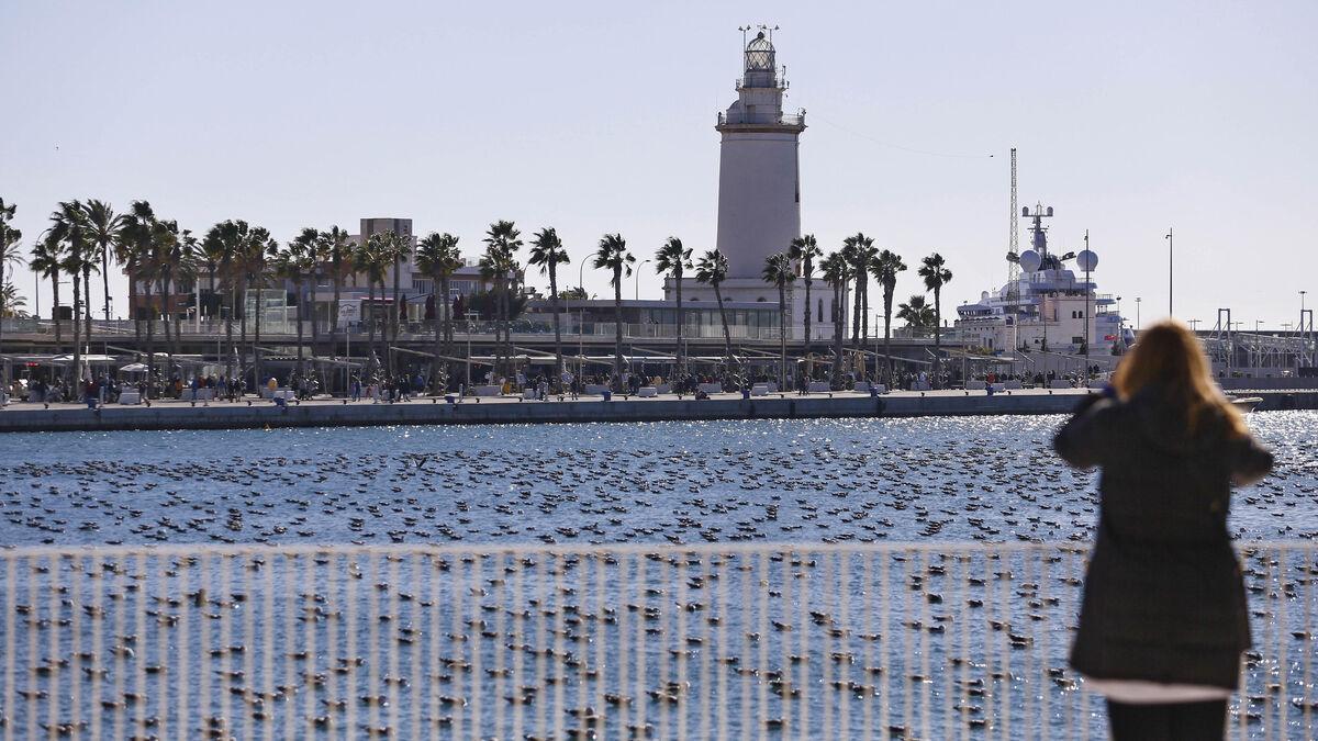 El tiempo en Málaga: El calor regresa a la provincia, que llegará a los 24 grados esta semana