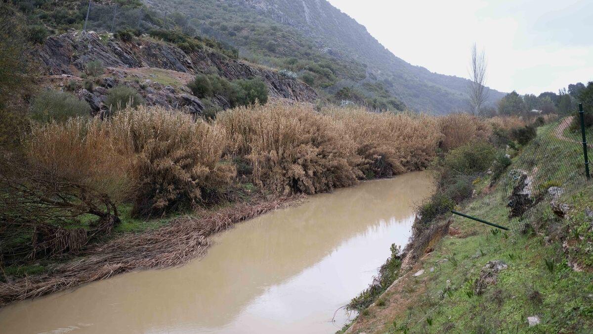 Ecologistas ponen en duda el sistema de depuración para la cuenca del Guadiaro